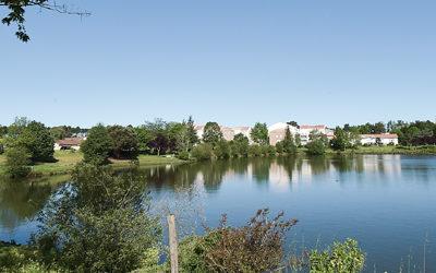 Pourquoi et comment investir dans l'immobilier à Villenave d'Ornon ?