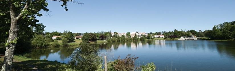immobilier Villenave d'Ornon
